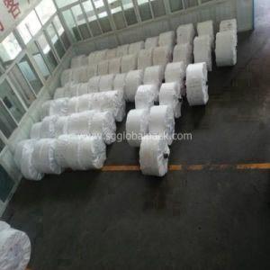 Polypropylene Woven Raffia Fabric pictures & photos
