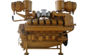 Diesel/Gas Engine (190 type) pictures & photos