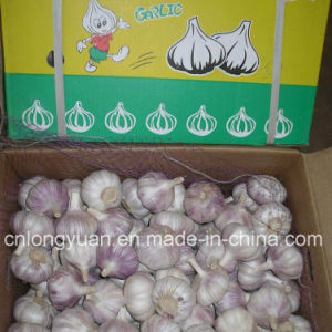 New Crop Mesh Bag Packing Chinese Garlic pictures & photos