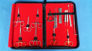 Double Eyelid Blepharoplasty Ophthalmic Instrument Set pictures & photos