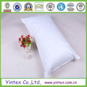 Custom Goose Down Pillow, Verious Size Goose Down Pillow pictures & photos