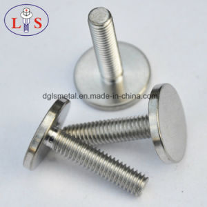 Stainless Steel Flat Head Bolt pictures & photos