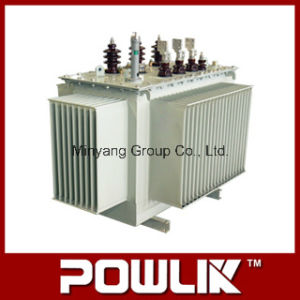 11kv Grade S11-M Series Oil-Immersed Distributing Transformer pictures & photos