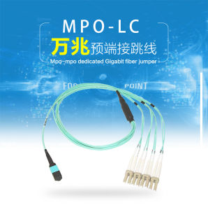 8-Core MPO-LC Fiber Patch Cord pictures & photos