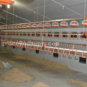 Automatic Poultry Feeding and Drinking Equipment for Chickens pictures & photos