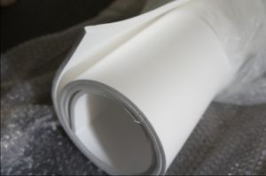 100% Pure Expanded PTFE Sheet for Flange Seal pictures & photos