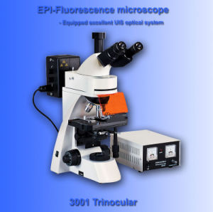 Epi-Fluoresence Microscope for Uis (AB-FM3001)