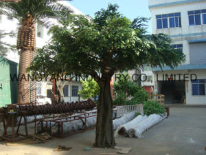 Factory Hot Sale Fake Artificial Synthetic Outdoor Banyan Ficus Tree pictures & photos