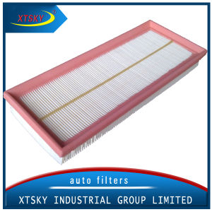 Air Filter Manufacturers Supply Air Filter (C3383-1) pictures & photos