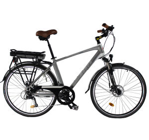 Competitive Price Electric Bicycle with 250W Motor pictures & photos