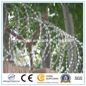 China All Kinds of Material Guard Blade Razor Barbed Wire pictures & photos