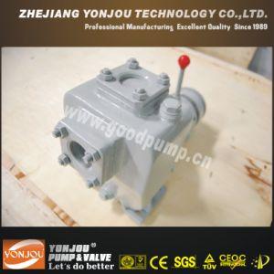 Vane Pump (YONJOU PUMPS) --China Manufacturer pictures & photos