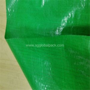 Green Color Plastic Tarpaulin Roll with Price pictures & photos