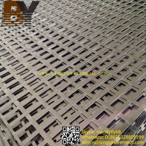 Stainless Steel Perforated Metal Sheet pictures & photos