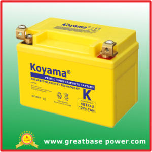 High Performance New Powerful Motorcycle Battery 12V 4.7ah pictures & photos