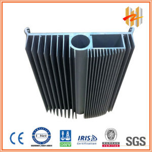 Aluminum Extruded Heatsinks (ZW-HS-006)
