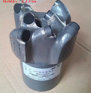 113mm PDC Non-Coring Bit pictures & photos