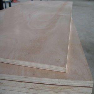 Poplar Hardwood Core Bulk Plywood