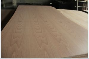 Natural Red Beech Face and Back Plywood 4.8mm and 18mm to Mexico pictures & photos