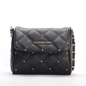 2015 Classic Designer Lady Handbag Handbags Bag Women Bag with Embroider and Rivet (3488)