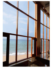 Luxury European Style Curtain Wall, Aluminum Cladding Wood