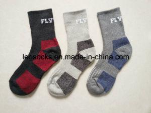 Men Sport Cotton Sock pictures & photos