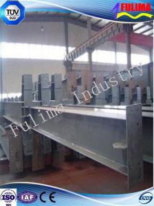 High Quality Steel Girder/ Steel Beam (FLM-BG-005) pictures & photos
