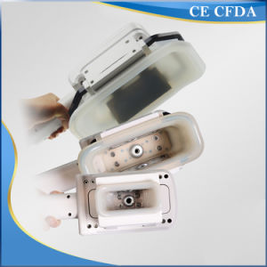 Economical Treatment of Frozen Fat to Lose Weight Equipment pictures & photos