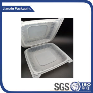 Disposable Recyclable Plastic Packaging Storage Tray pictures & photos