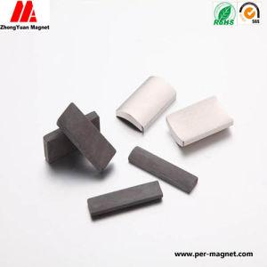 Shan Rare Eath Magnet Neodynium Magnet Motor Magnet for Sale