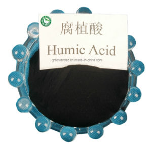 Humic Acid Powder & Granule