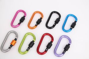 Climbing Button Carabiner pictures & photos