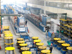 Steel Wire Galvanizing Line/Hot Dip Galvanizing Production Line