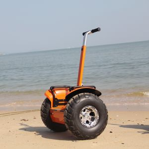 Two Wheel Electric Scooter Wind Rover with LCD off Road Electric Scooter Wind-Rover V4+ Electric Bike pictures & photos