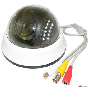 HD 700tvl 1/3 Sony CCD CCTV Security IR Infrared Day Night Dome Audio Mic Camera pictures & photos