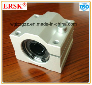 Standard Linear Case for Linear Rails pictures & photos