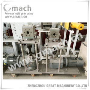 Melt Gear Pump Extrusion Melt Gear Pump pictures & photos