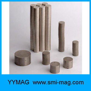 Samarium Cobalt (SmCo) Disc Magnets for Magnetic Couplings pictures & photos