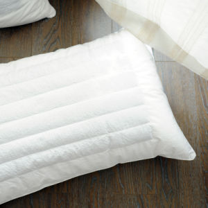 Best Selling Solid Colour Pillow