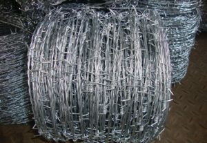 Good Price Electrode Galvanized Barbed Wire for Construct pictures & photos