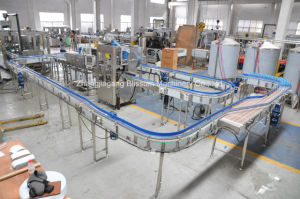 High Quality Bottle Conveyor System pictures & photos