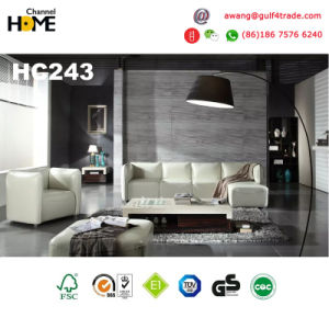 Good Quality Modern Furniture Pink Genuine Leather Sofa Set (HC229) pictures & photos