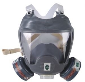 Full Face Protective Mask