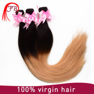 Brazilian Wet and Wavy Ombre Colored Indian Human Hair Weave pictures & photos