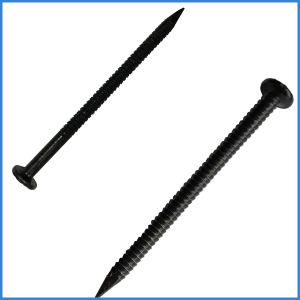Ring Shank Black Iron Nail with Factory Price pictures & photos
