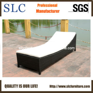 Wicker Outdoor Lounge/ Lounge (SC-B1078-3) pictures & photos