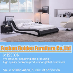 Fashion Double Bed pictures & photos