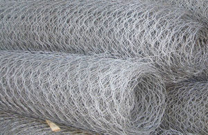 Hexagonal Galvanized Fencing Wire Mesh with High Quality pictures & photos