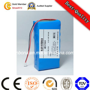 Li Polymer Battery Lithium-Ion Battery LiFePO4 Battery Pack pictures & photos
