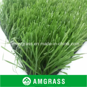 for Football Feild Green Artificial Turf (ASS-60D) pictures & photos